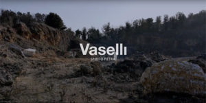portfolio-video-vaselli-1